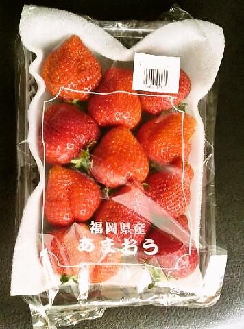春はイチゴ
